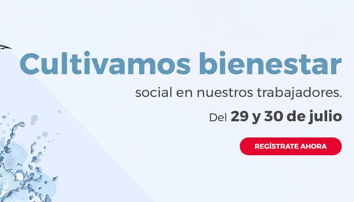 XI Congreso Internacional de Aneberries
