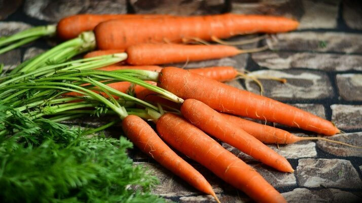 III International Symposium on Carrot and other Apiaceae