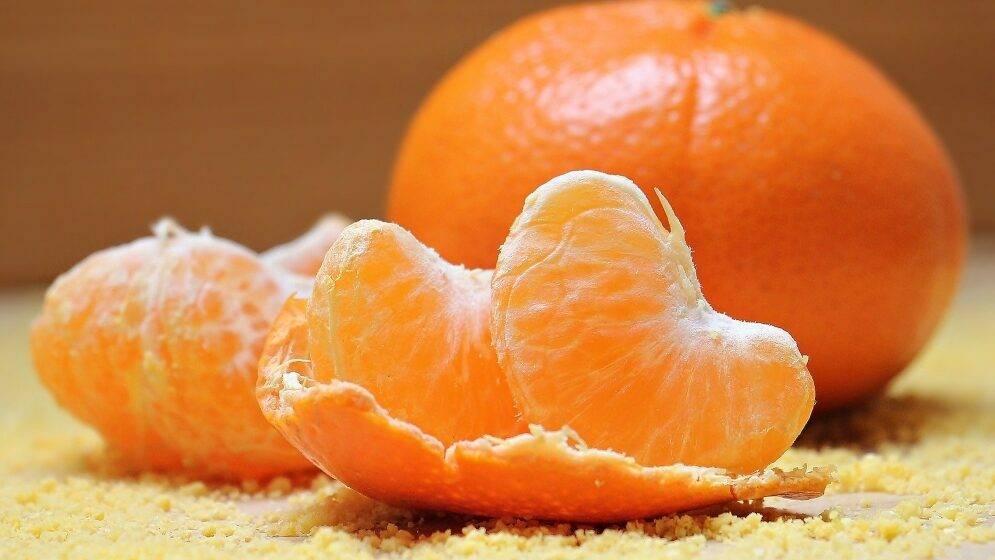Injerto de citricos