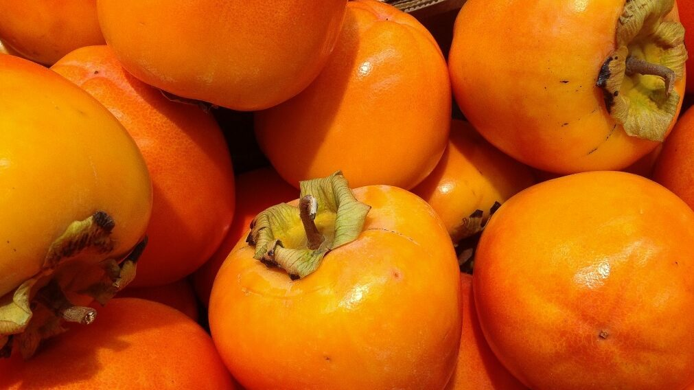 VII International Symposium on Persimmon