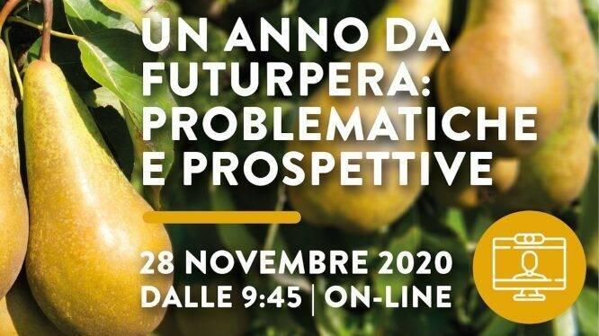 Un anno da FuturPera: problematiche e prospettive