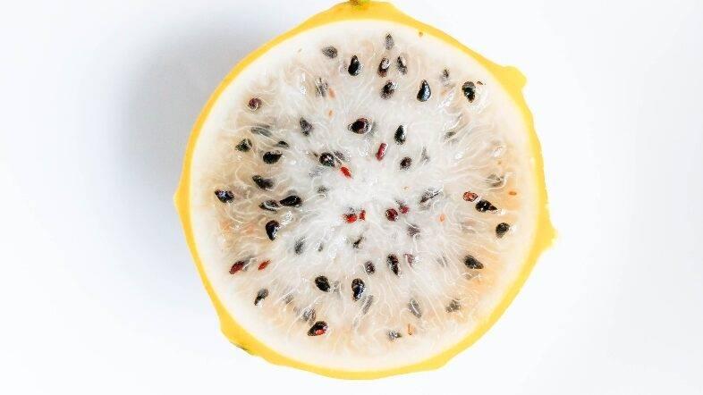 Cultivos exóticos alternativos a los hortícolas: la pitahaya