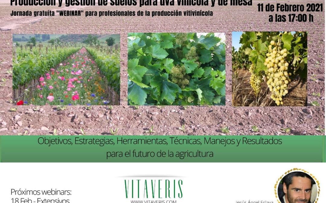 Producción y gestión de suelos para uva vinícola y de mesa
