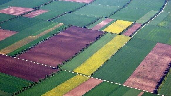 III Jornadas Científico-Técnicas de Teledetección y Agricultura de Precisión