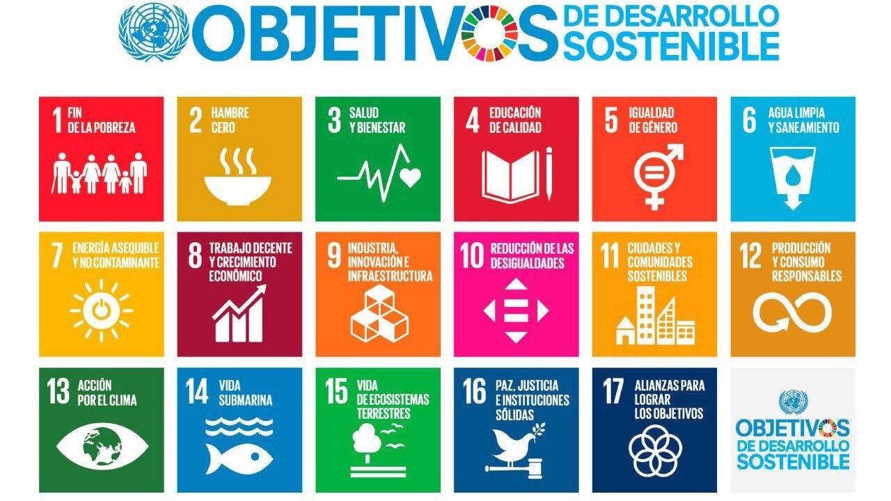 La formación de los equipos en el desarrollo y cumplimiento de los ODS