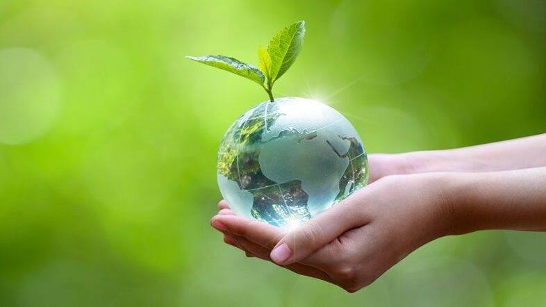 La sostenibilidad en la producción agrícola