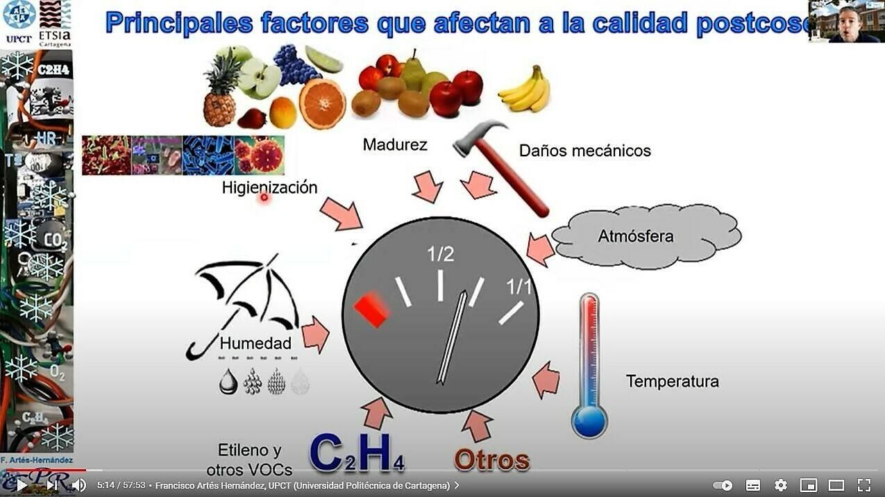 Controladores de temperatura y humedad, coliflor bajo estrés y recubrimientos vegetales