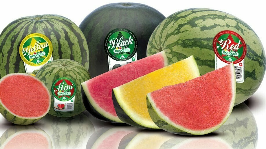 Control de Biofilms y las campañas Bouquet de melón y sandía