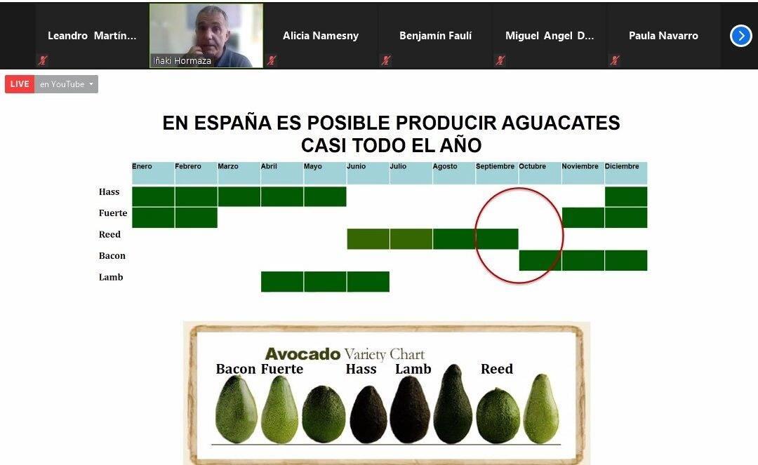 Aguacates todo el año y Área de Alimentación y Salud de F. Cajamar