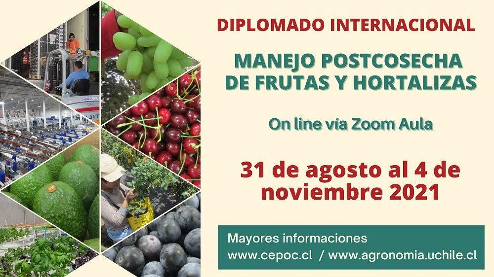Diplomado Internacional Manejo Postcosecha de Frutas y Hortalizas
