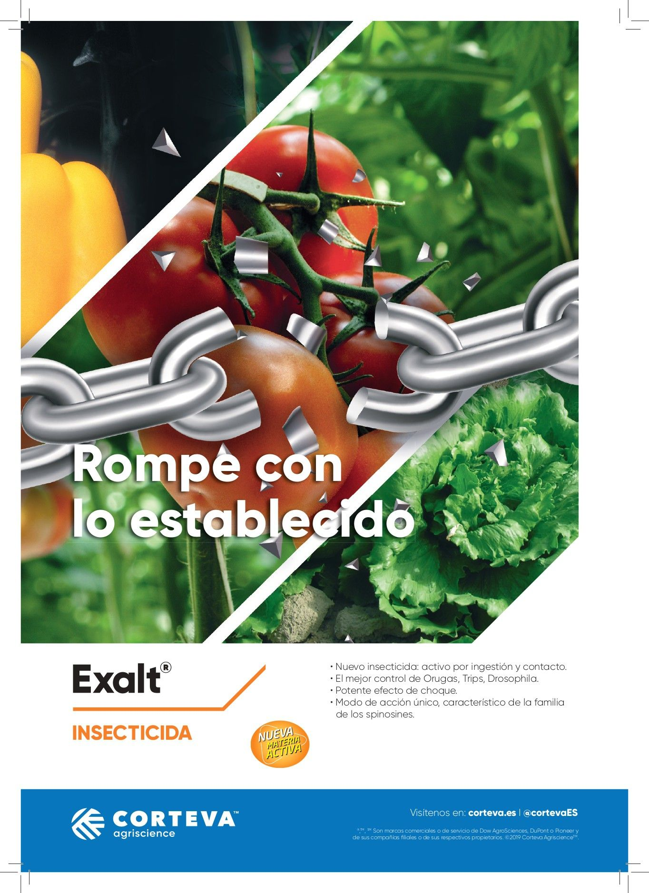 EXALT®