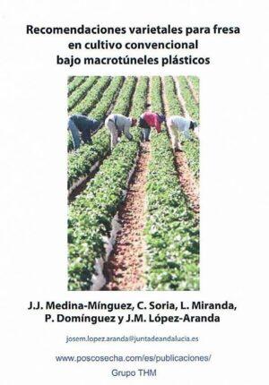 Recomendaciones varietales para fresa en cultivo convencional bajo macrotúneles plásticos