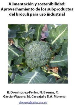 Alimentación y sostenibilidad: aprovechamiento de los subproductos del brócoli para uso industrial