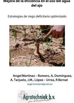 Mejora de la eficiencia en el uso del agua del ajo. Estrategias de riego deficitario optimizado