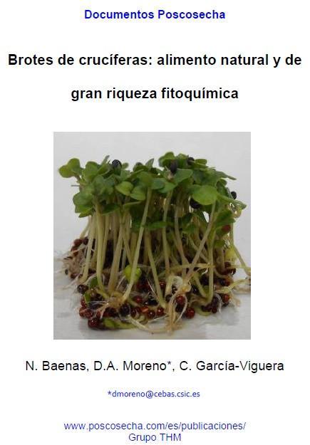 Brotes de crucíferas: alimento natural y de gran riqueza fitoquímica