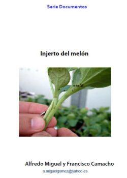 Injerto de melón