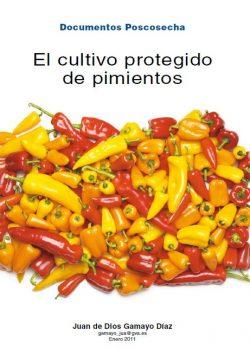 El cultivo protegido de pimientos
