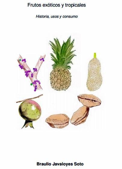Frutos exóticos y tropicales