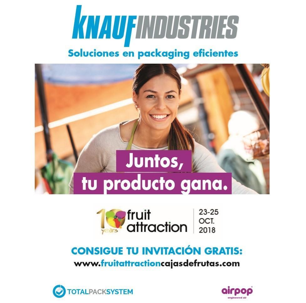 Knauf Industries
