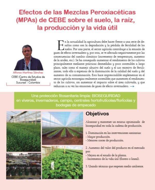 Efectos de las Mezclas Peroxiacéticas de CEBE sobre suelo, raíz, producción y vida útil