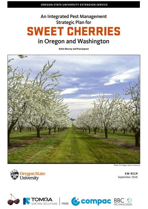 Plan estratégico de manejo integrado de cereza