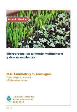 Microgreens, un alimento multimineral y rico en nutrientes