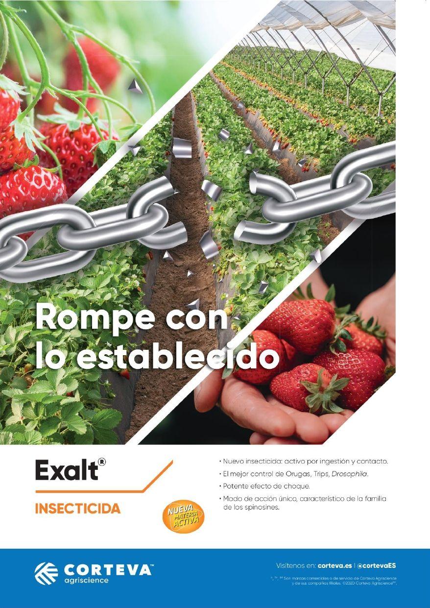 CORTEVA AGRISCIENCE EXALT®