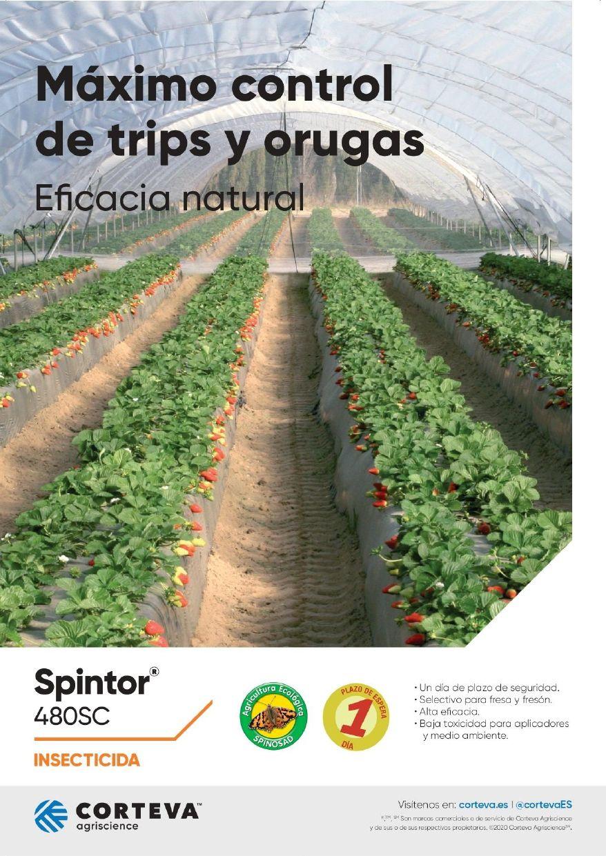 CORTEVA AGRISCIENCE Spintor 480 SC